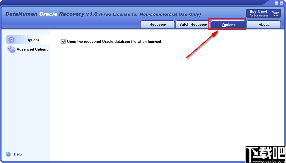 DataNumen Oracle Recovery(Oracle数据库恢复工具)