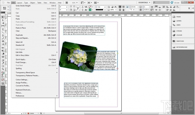 Adobe InDesign CS52